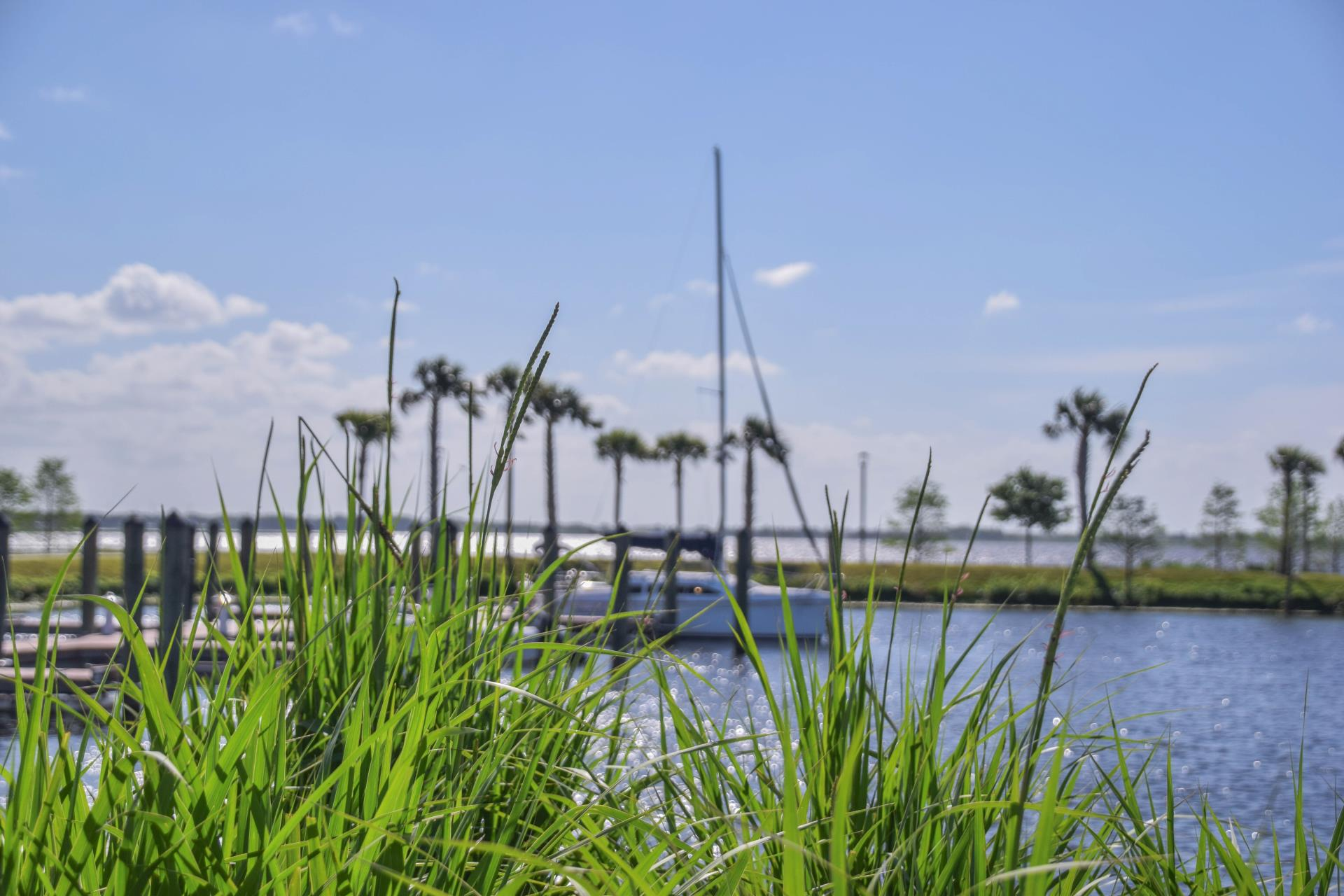 Kissimmee Lake, Boat, Fishing