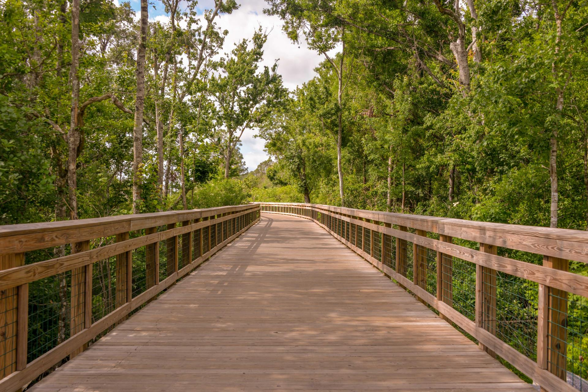 Shingle Creek Regional Trail board walk North segment.