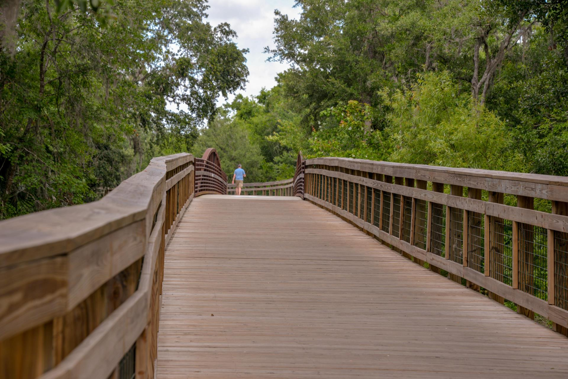 Shingle Creek Regional Trail with man crossing bridge