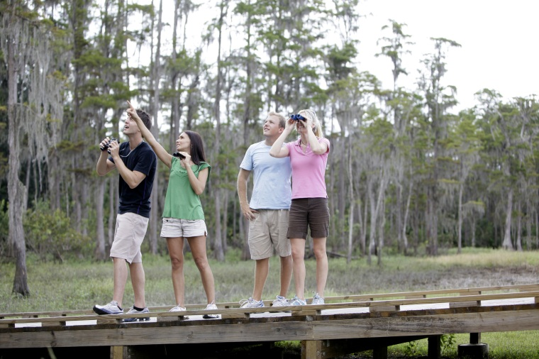 Shingle Creek Bird Watchers